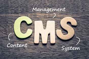 Custom Content Management System